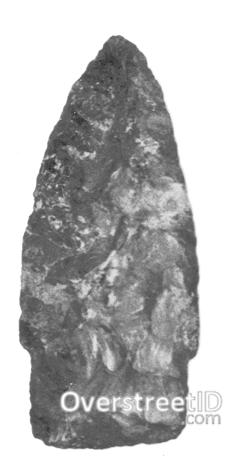 Eastern Stemmed Lanceolate